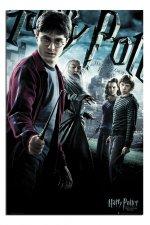 Harry Potter and the Half-Blood Prince - Ο Χάρυ Πότερ & ο Ημίαιμος Πρίγκηψ
